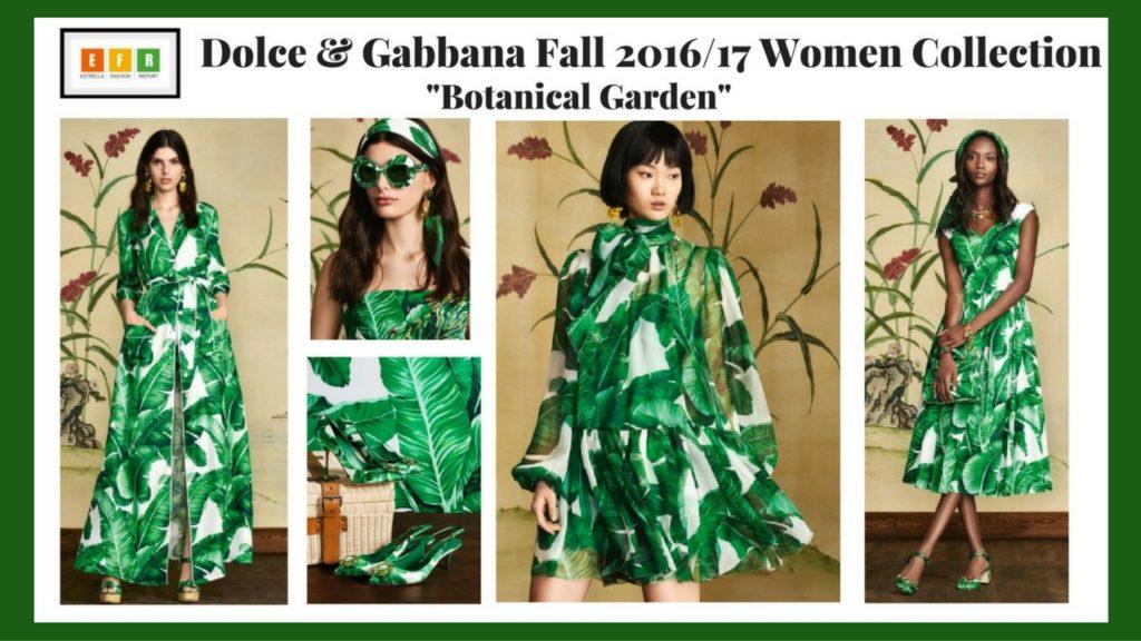 Dolce & Gabbana-Dolce-Gabbana-Fall-