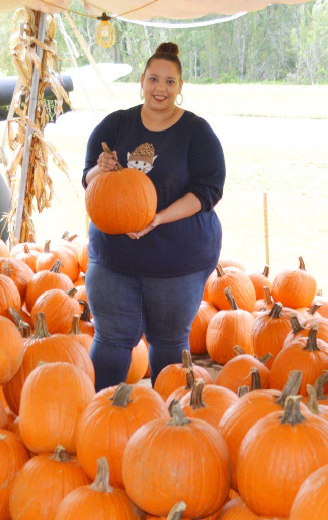 pumpkin patch in lutz, Florida