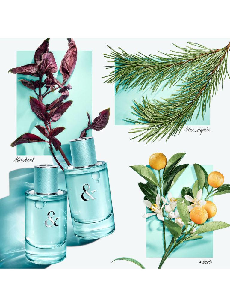 Tiffany & Love Fragrance