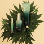 Milani Cosmetics Cannabis Sativa Seed Oil Infused Line Called 'Green Goddess' Is Here!