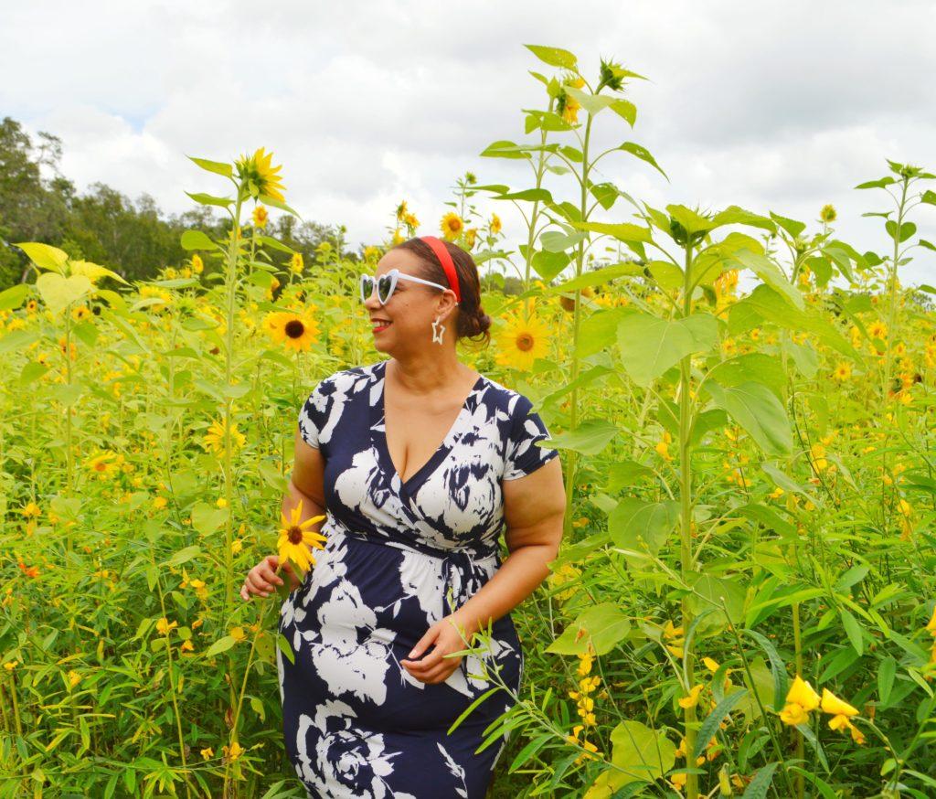 sunflower picking in florida
